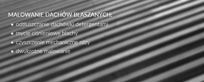 baner_home_blaszane_after